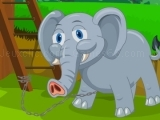 Play Baby Tusker Survival now
